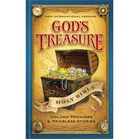 NIV God's Treasure Hardcover Holy Bible